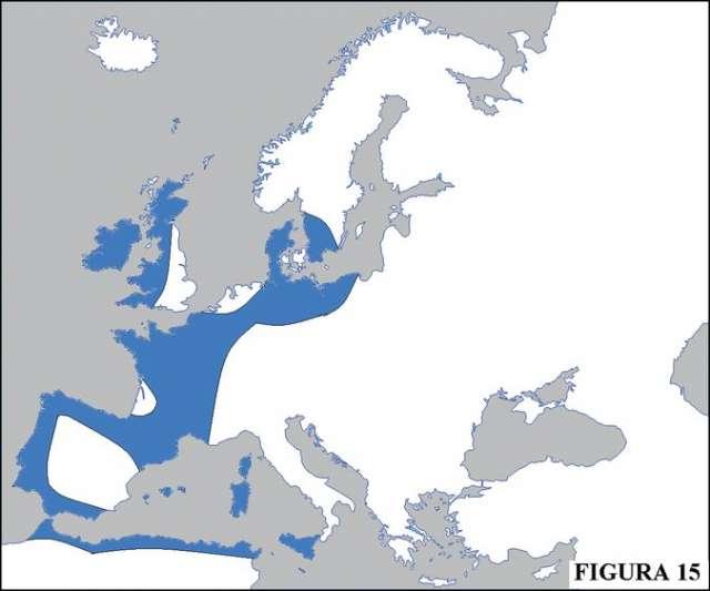 En la figura 15, el autor muestra la expansión del Megalitismo