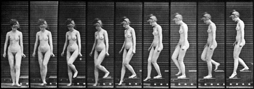 Un parpadeo al infinito de Eadweard Muybridge.
