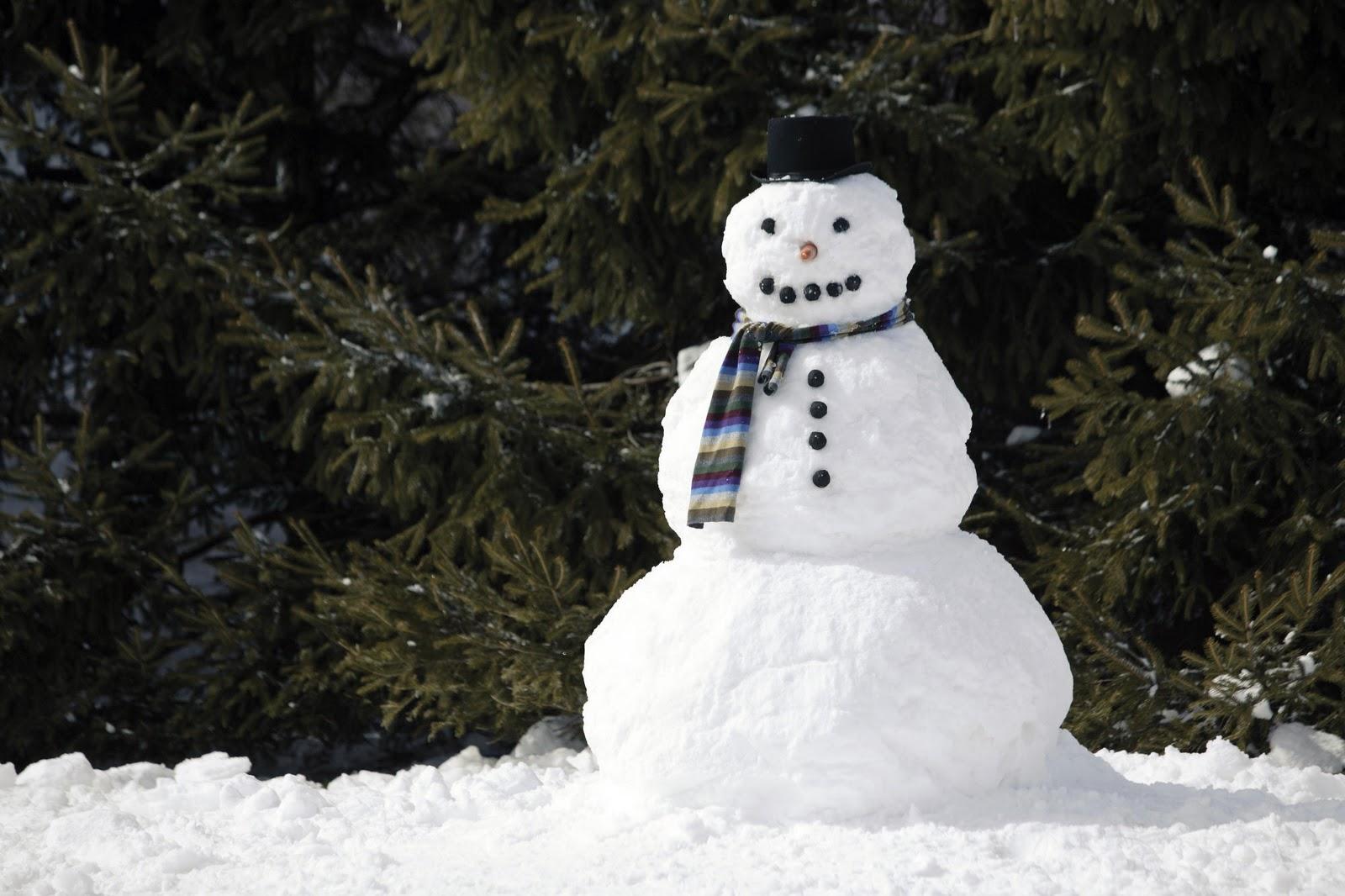 Muñeco de nieve | Vía: alertadigital.com