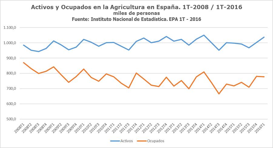 Activos y Ocupados en la Agricultura en España 2008 -2016