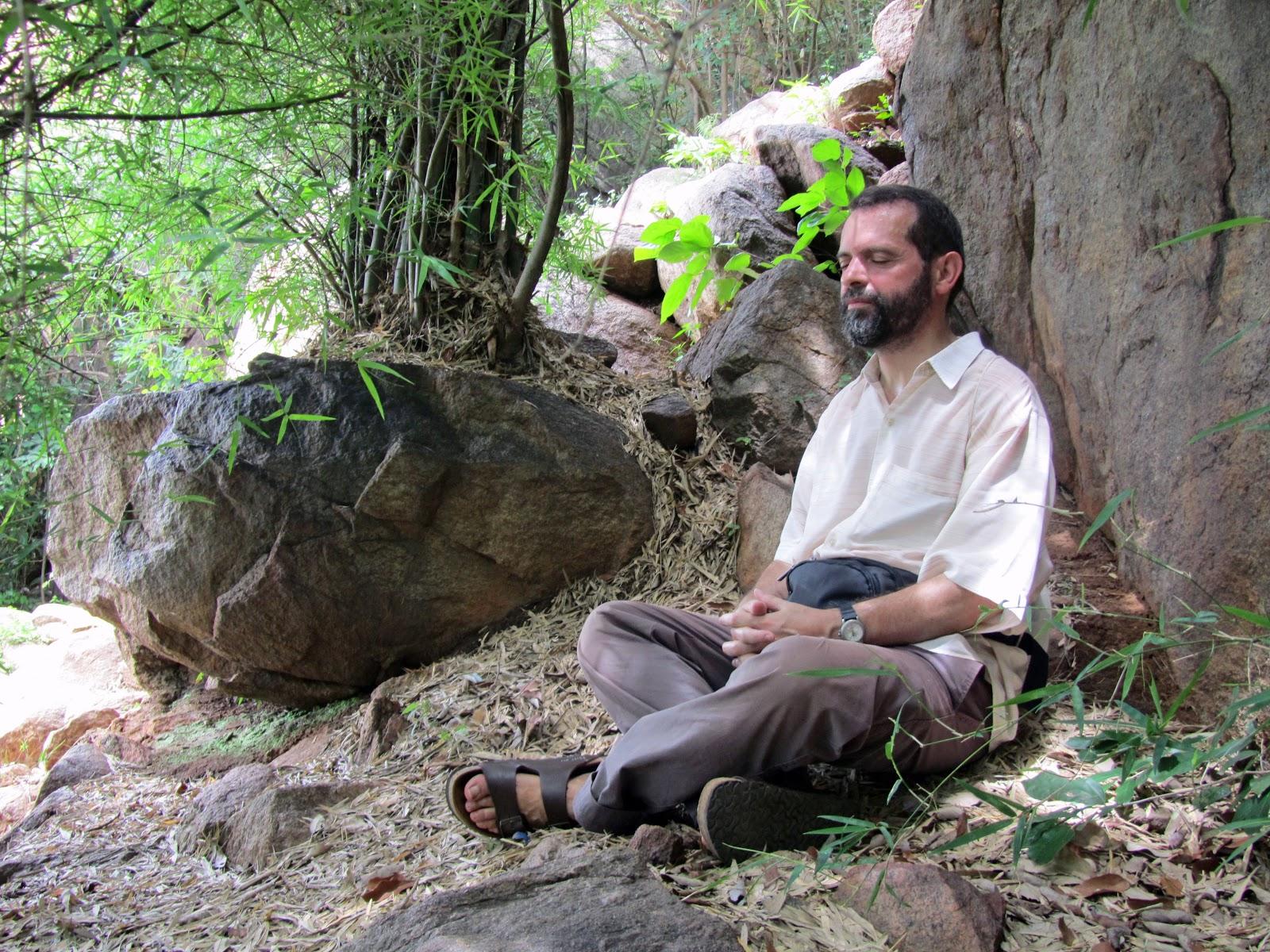 Javier Melloni | Vía: http://arbresjosepgordi.blogspot.com.es/